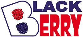 Academia BlackBerry tu academia en Huelva