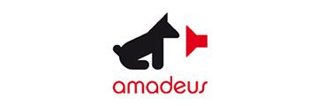 Academia de Música Amadeus tu academia en Logroño