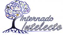 Internado Intelecto tu academia en Palencia