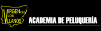 Virgen de los Llanos tu academia en Albacete
